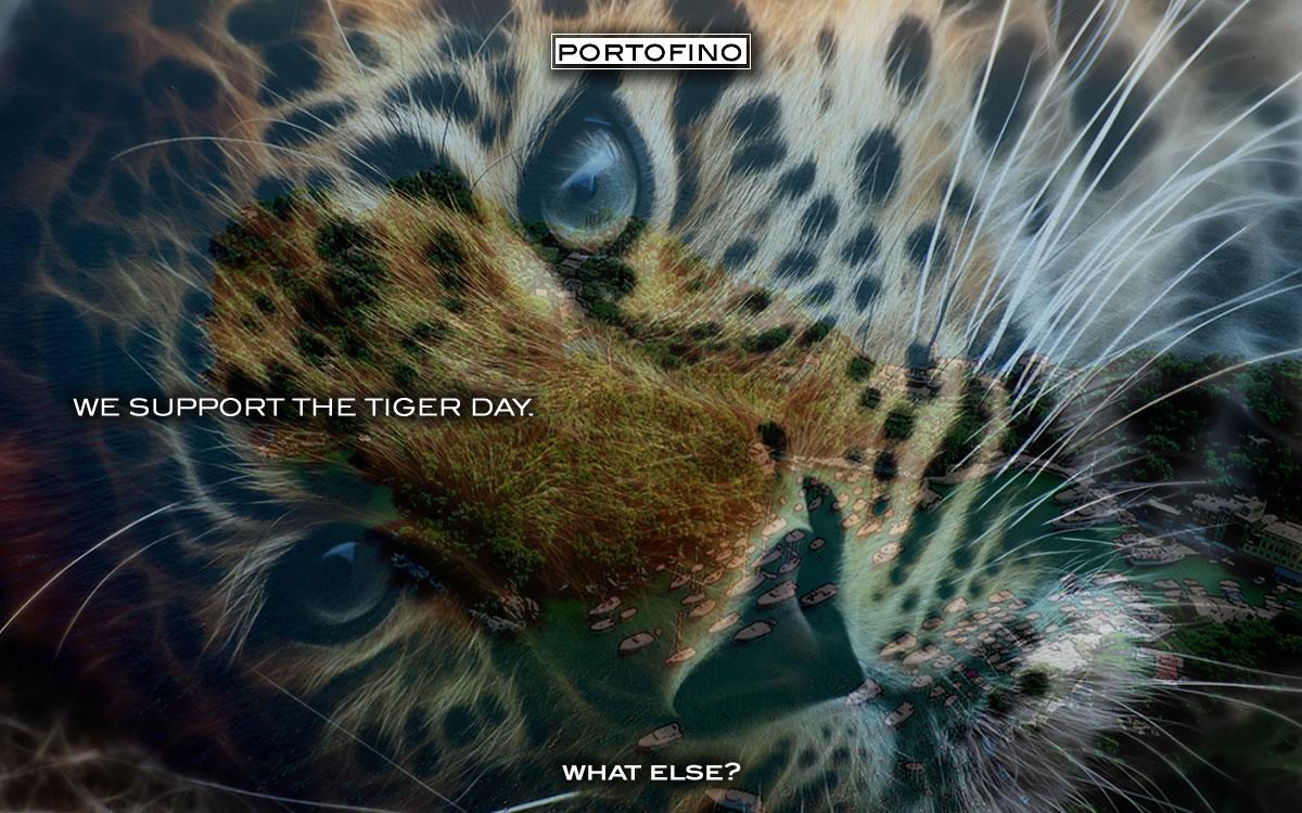 portofino-tiger-day