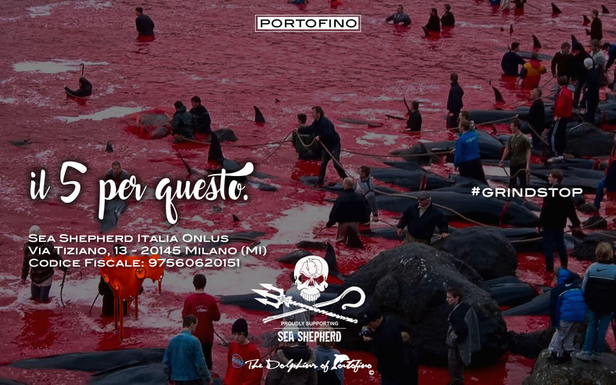 portofino-SEA-SHEPHERD-IL-5-2017