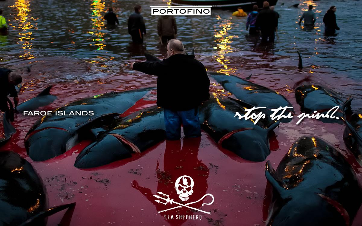 portofino-sea-shepherd-grindstop-campaign